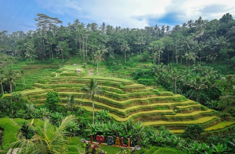 Village in Ubud Uses Eco-Friendly Waste Management To Reduce Garbage