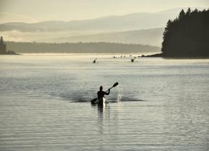Metallak paddle_571x414