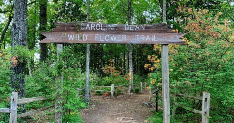 Caroline Dean Wildflower Trail