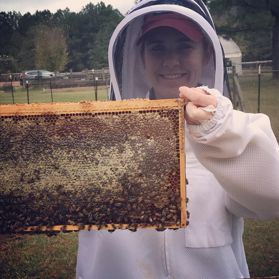 73475137 2756756184346583 4856694948973510656 N Alabama Honey, Honey, Local Honey