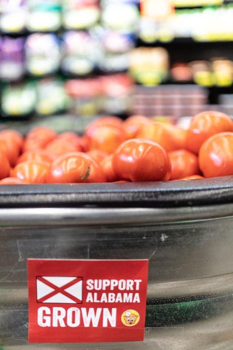 Ripe Tomatoes On Display