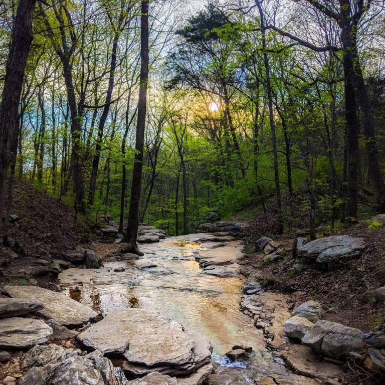 Huntsville, scope out these 5 hiking trails in your area