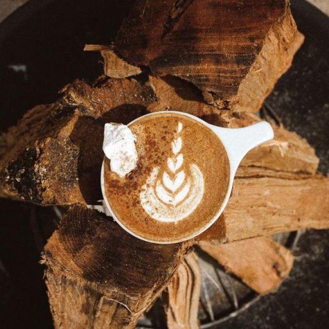 Tuscaloosa Coffee Shops