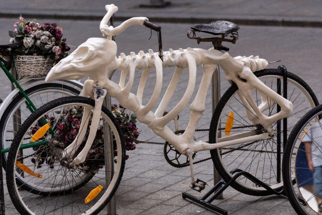 White Skeleton Bicycle