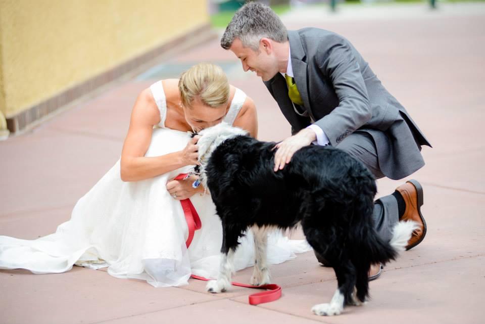 Hopeful Hearts Dog Rescue Phone Number