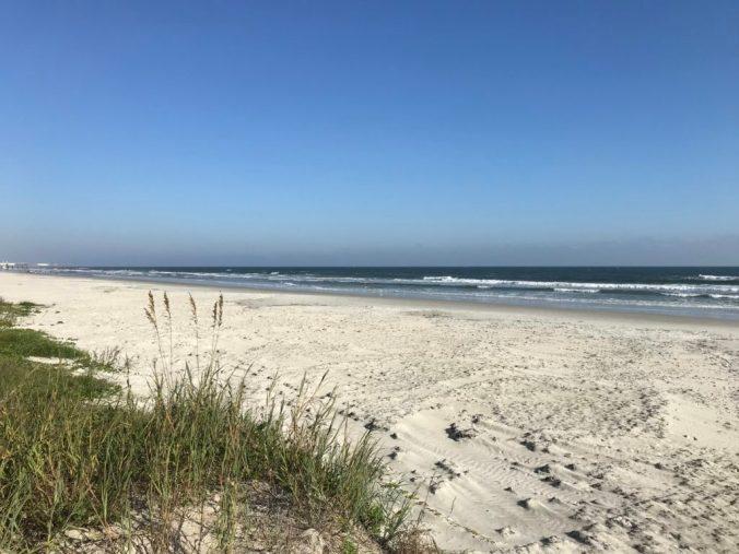 grasses, sand, ocean, blue sky