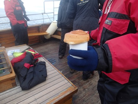 A warm treat on our Husavik whale tour