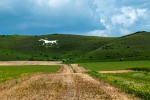Alton Barnes White Horse