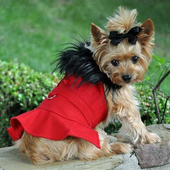 Coats for Dogs
