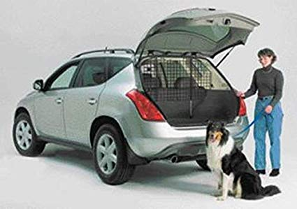 Vehicle Dog Barriers