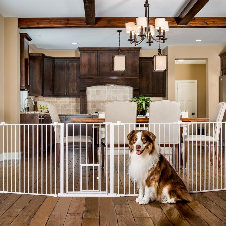 Pet Gates and Play Yards