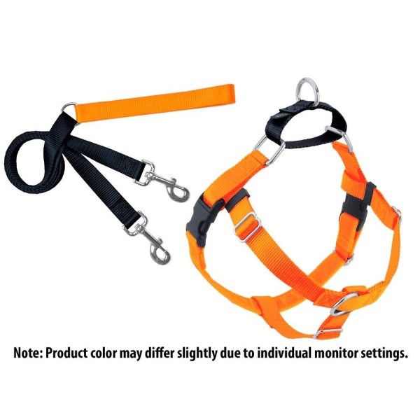 No Pull Harness and Leash Set for Dogs