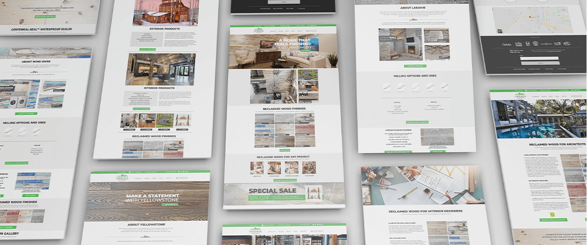 Images of the various website pages designed.