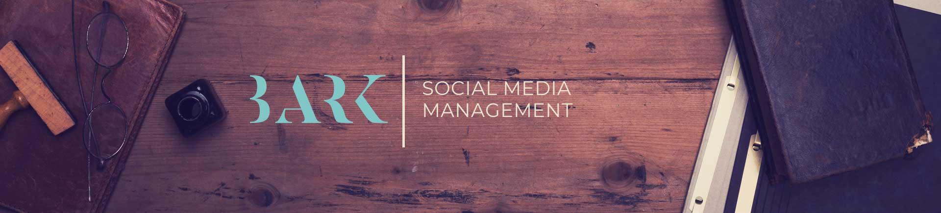 Social media management for businesses