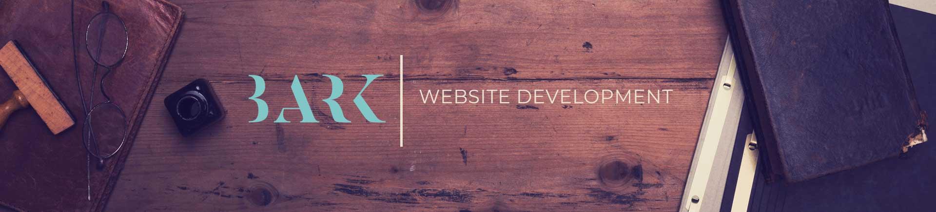 website development for businesses