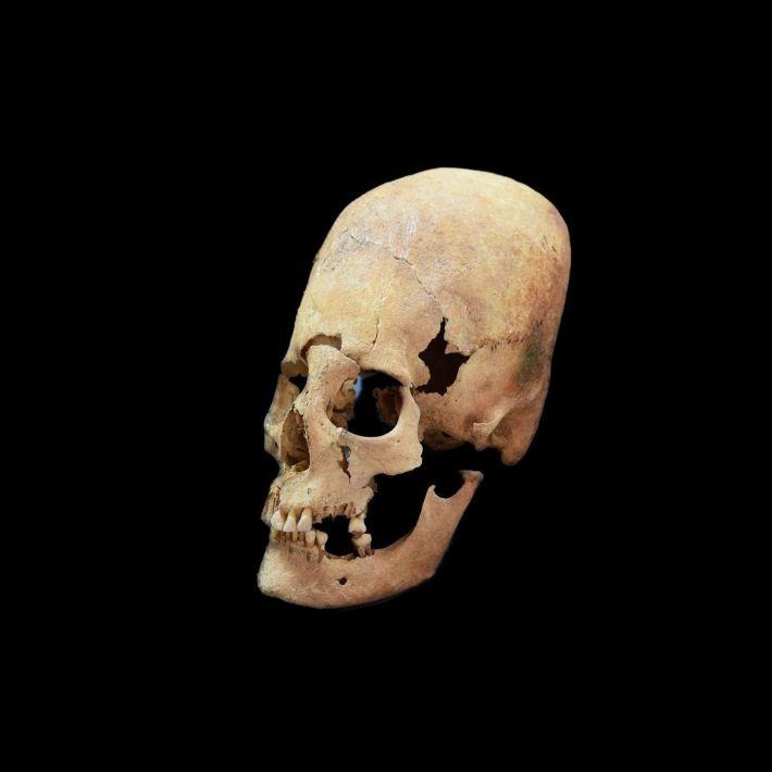 The Paracas Skulls – Brien Foerster Interview