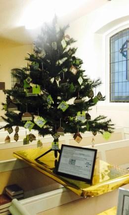 WI tree 2015 - 10