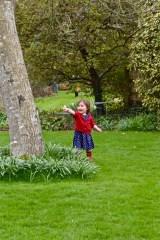 The Bath Priory open garden - 41