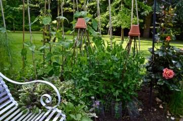 gardens - 20