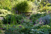 gardens - 74
