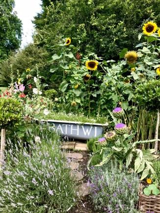 wi garden 20 july 2017 - 16