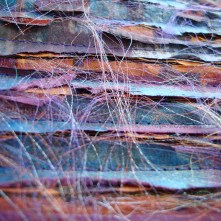 Tactile Texture