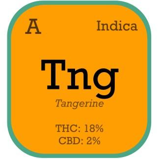 Tangie Auto Tangerine