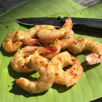 The WolfWise Portable Camping Grill & Key West Shrimp Recipe
