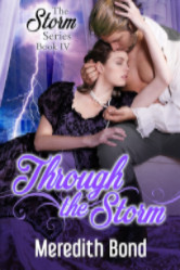 Cover image for Through the Storm by Meredith Bond