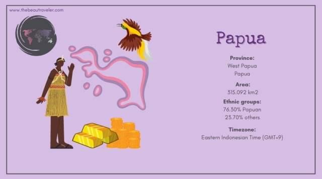 Papua infographic.