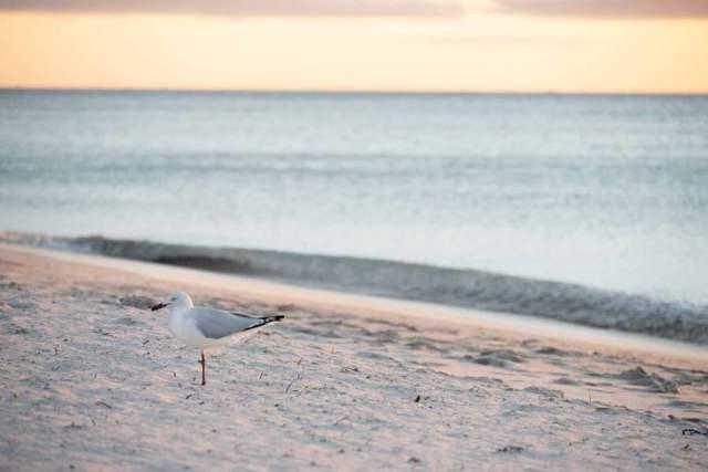 Perth Beach.