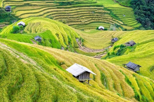 Vietnam view.