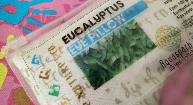 The Nature's Co Eucalyptus Eye Pillow