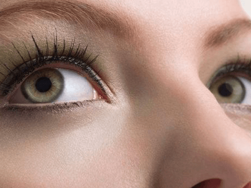 all about eyes 1