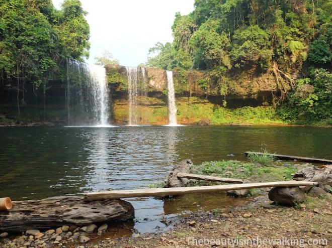 La cascade Tad Champee sur le plateau des Bolovens, Laos
