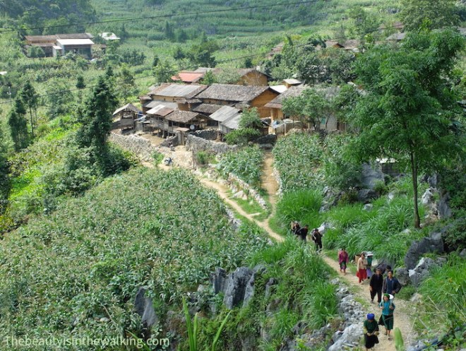 Village and villagers