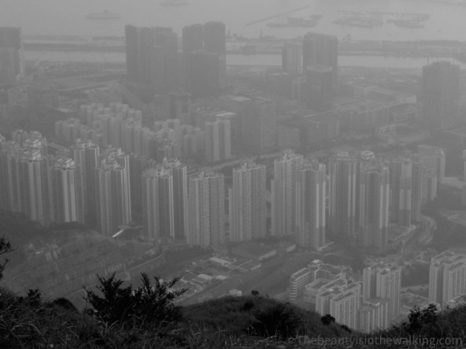 View over Hong Kong and its buildings