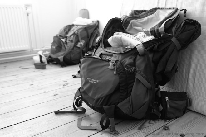 Traveling back packs