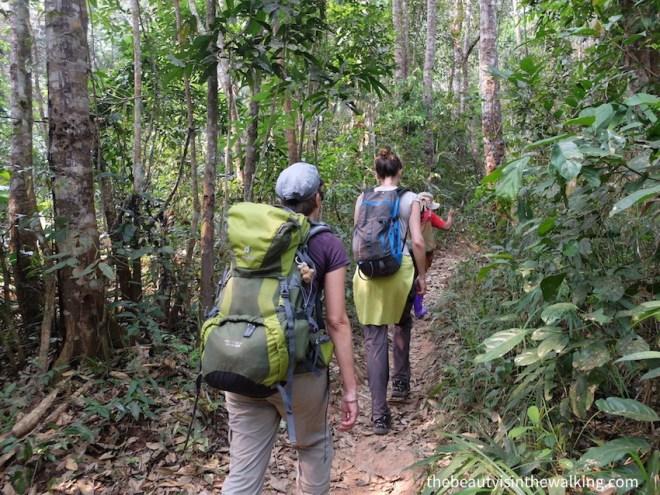 Trek dans la jungle, Laos