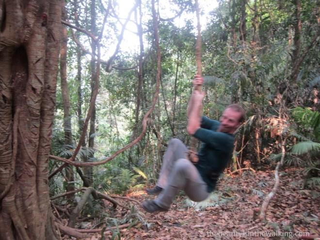 Suspendu à une liane, Laos