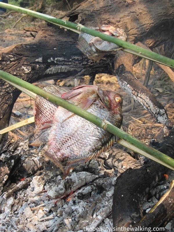 Poisson grillé, Laos