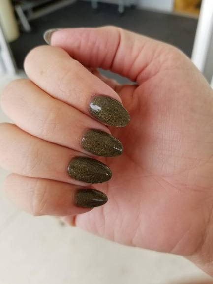 All About SNS Nails