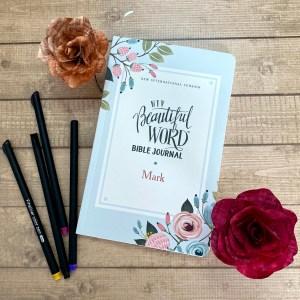 NIV Beautiful Word Bible Journal