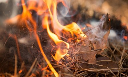 Casita Fire Lake Havasu