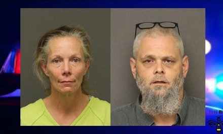 Two Arrested On Suspicion of Burglary