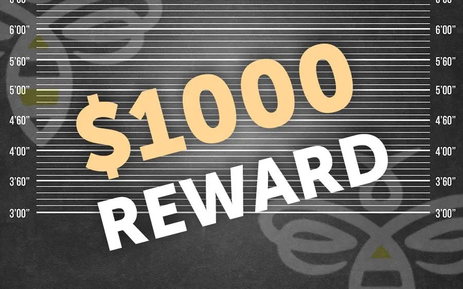 Drive by shooting – Reward being offered for information