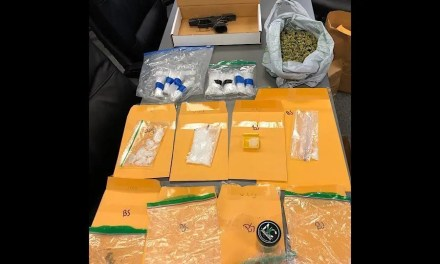 Narcotic Search Warrant