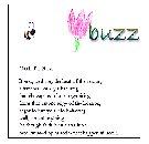 Buzzpiece_1