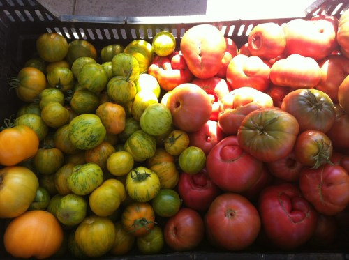 Look at the pretty heirlooms!