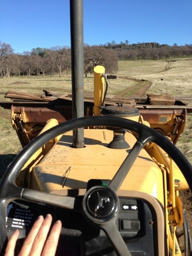 My Dad had so much fun with my friends, he made me start driving the backhoe to the lumber pile so he could hang out and visit!